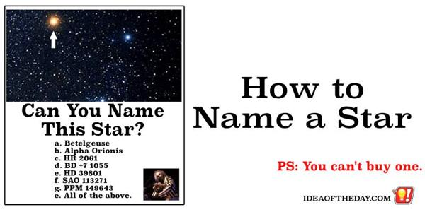 Want To Name A Star The 21st Century Pet Rock It S The Thought That Counts Idea Of The Day A New Idea Each Day Some Don T Suck
